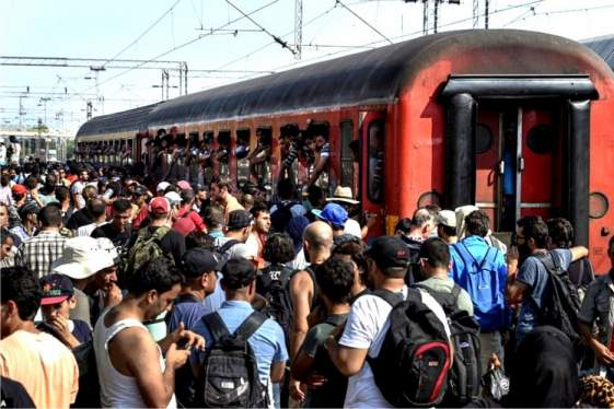 FYROM: Μετανάστες παλεύουν για μια θέση στο τρένο
