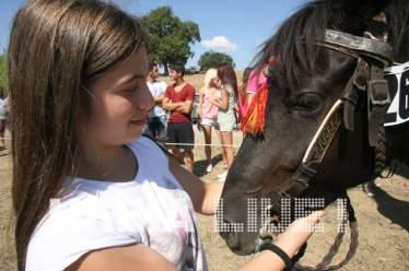 Τα άλογα Πηνείας γιορτάζουν . . .