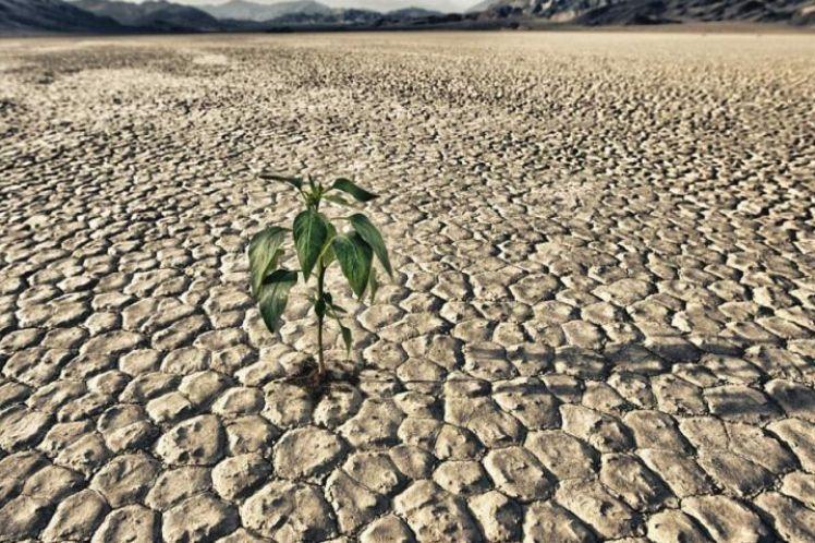 Η μετανάστευση στο μέλλον λόγω έλλειψης νερού θα είναι εντυπωσιακή
