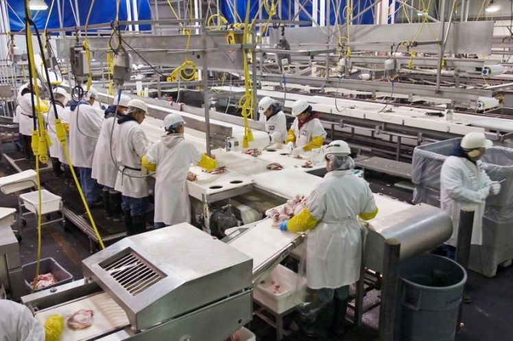 Μεταποίηση, εμπορία ή ανάπτυξη γεωργικών προϊόντων με τελικό προϊόν μη γεωργικό