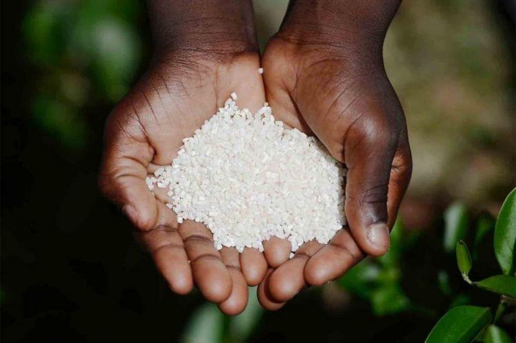 Ένα πιάτο ρύζι με φασόλια κοστίζει 1.20 δολ. στη Νέα Υόρκη αλλά 73 δολ. στην Αϊτή