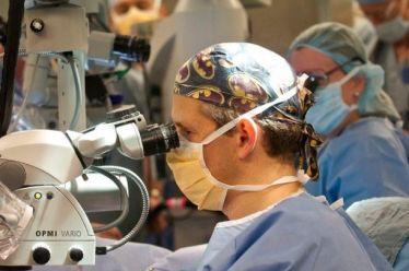 Τυφλά πειραματόζωα ξαναβρήκαν μερικώς την όρασή τους χάρη σε νέα μέθοδο