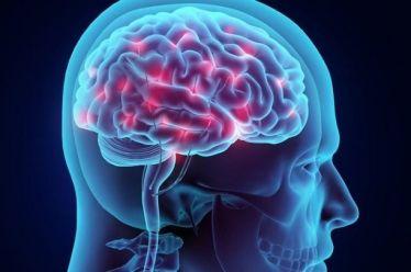 Ο εγκέφαλος των γυναικών φαίνεται τρία χρόνια νεότερος από ό,τι των ανδρών της ίδιας ηλικίας