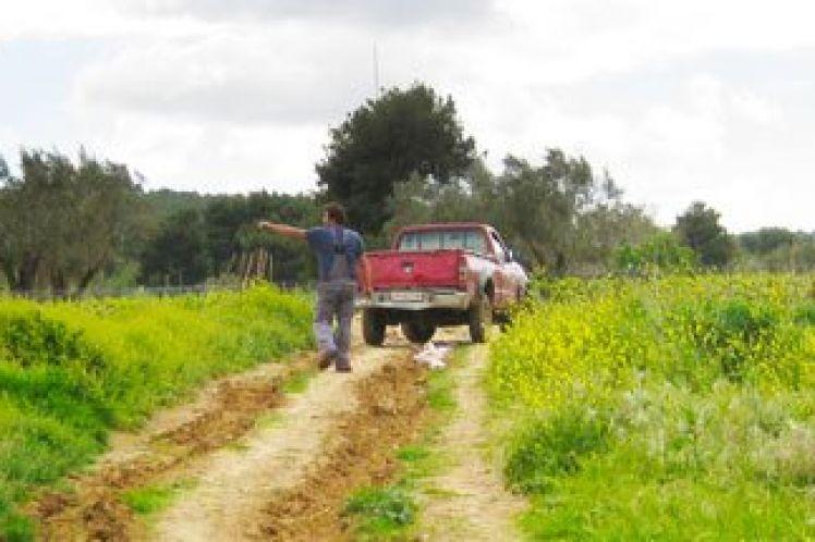 Τι χρειάζεται προσοχή στις δηλώσεις κτηματογράφησης, πότε χωράφι ή σπίτι χαρακτηρίζεται αγνώστου ιδιοκτήτη και πάει στο δημόσιο