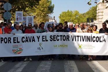 Διαδήλωση αμπελουργών της Βαλένθια για χαμηλές τιμές οινοστάφυλων, ποια τα αιτήματά τους