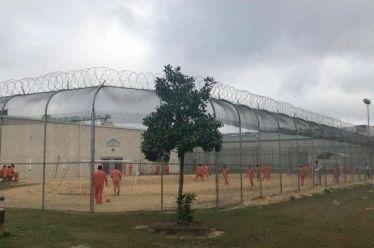 ΗΠΑ: Καταγγελίες για υποχρεωτική στείρωση μεταναστριών στα κέντρα κράτησης – «Γκουαντανάμο» της Τζόρτζια